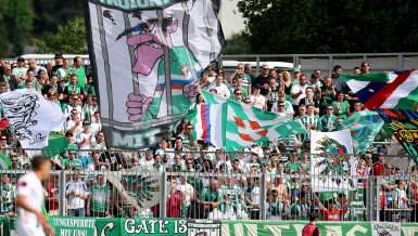 Rapid-Fanvertreter im Interview
